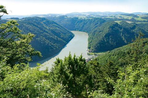 Wanderung an der Donau