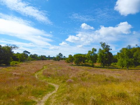 Landscape at the hiking trail in Scotland