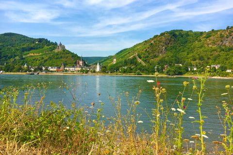 Traumhafter Rheinblick auf der Wandertour