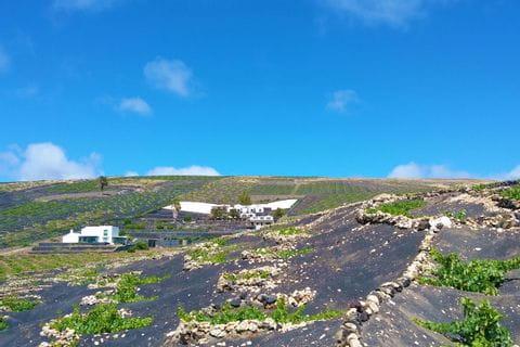 Landscape of La Geria in Lanzarote