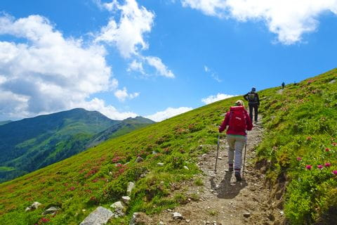 Hikers on the Pinzgau mountain route