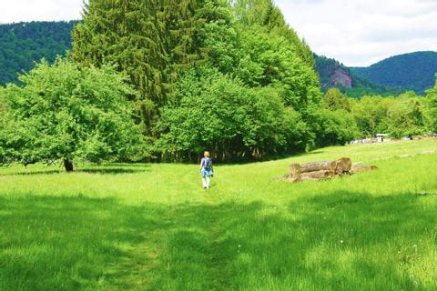 Wandern durch die wunderschönen Wiesenlandschaften