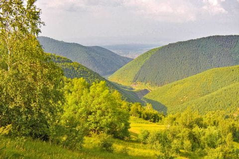 Green countryside in Transylvania