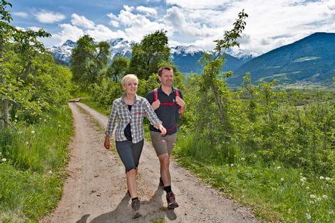 Hiker along the Via Claudia close to Churburg castle