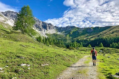 Wanderer inmitten österreichischer Almlandschaft