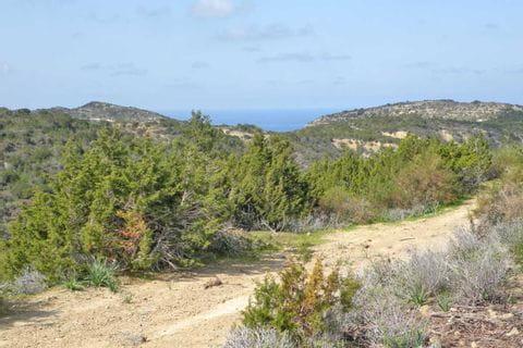 Hiking path to the sea