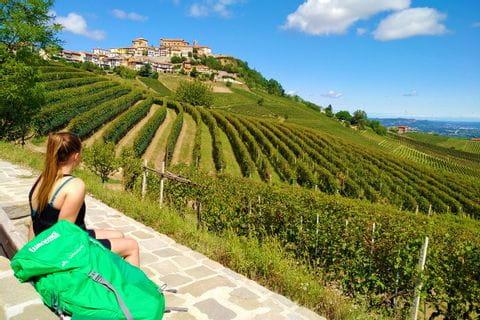 Ausblicke auf die Weingärten des Piemonts