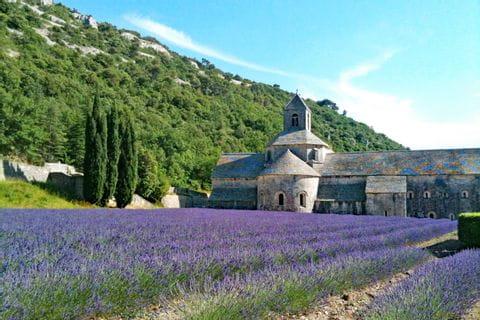 Wandern entlang Lavendelfelder zum Kloster Sénanque