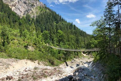 Impressions suspension bridge