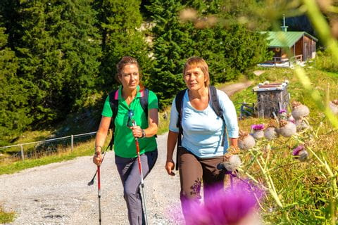 Walkers on the Maximilian's Trail from Lindau to Füssen