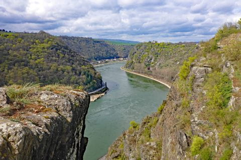 The famous loreley rock on the Rhine