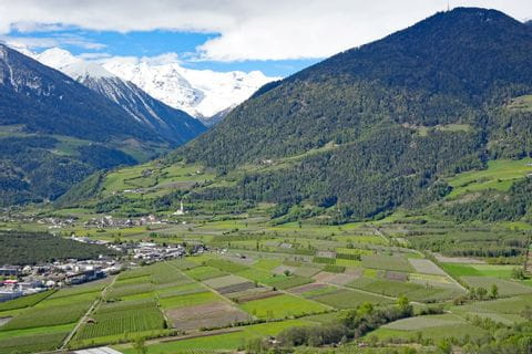 View to mount Ortler while mountain hiking in Vinschgau valley