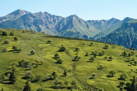Wandern auf dem Hochplateau des Sancy Massivs in der Auvergne