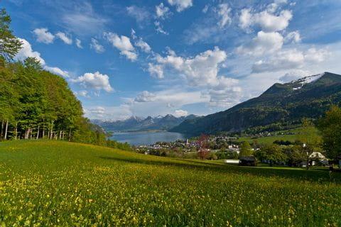 Ausblick auf den Wolfgangsee