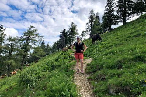 Wanderung auf den Hohen Zinken durch die Weide von Pferden