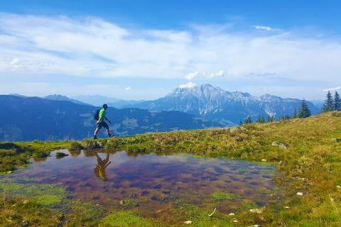 Wanderer am Pinzgauer Höhenwanderweg