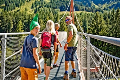 Tree top walk and Golden Gate Bridge of the Alps