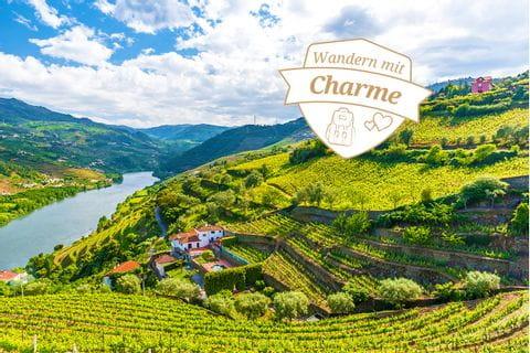 Blick auf das Douro Tal