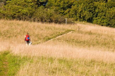 Wanderweg durch Felder im Altmuehltal