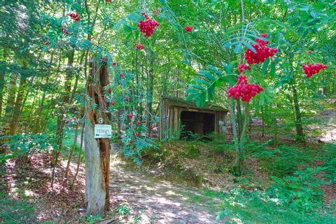 Hiking trail in the direction of Seekopf