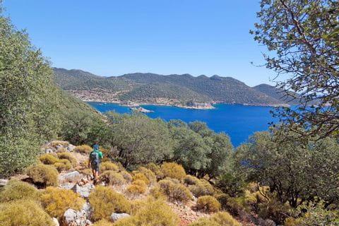Dreamview at Turkey bay