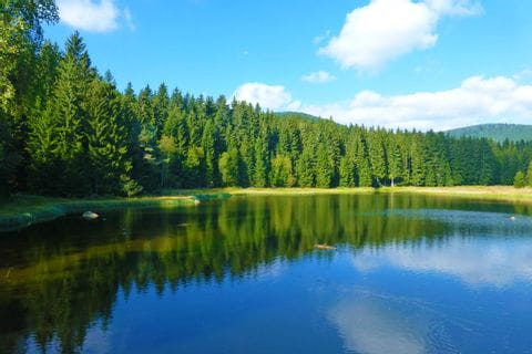 Hiking break at the idyllic Lake Schluchsee