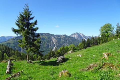 wunderschöne Berglandschaft beim Wandern in Bayern