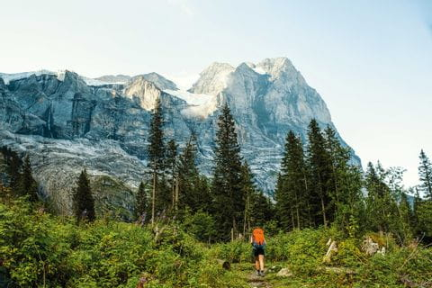 Hikers in the hamlet of Schwarzwaldalp with the Wetterhorn in view
