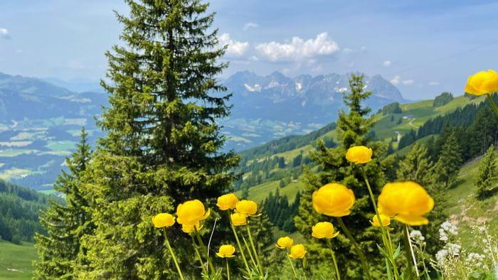 Hiking in the Kitzbühel Alps